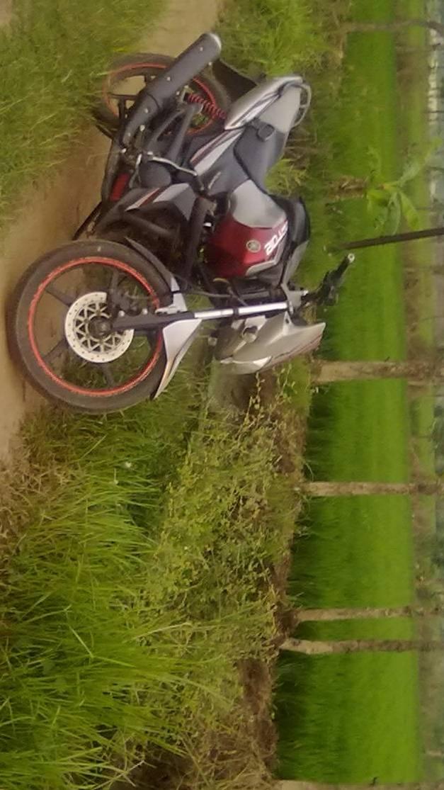 Yamaha In Farm