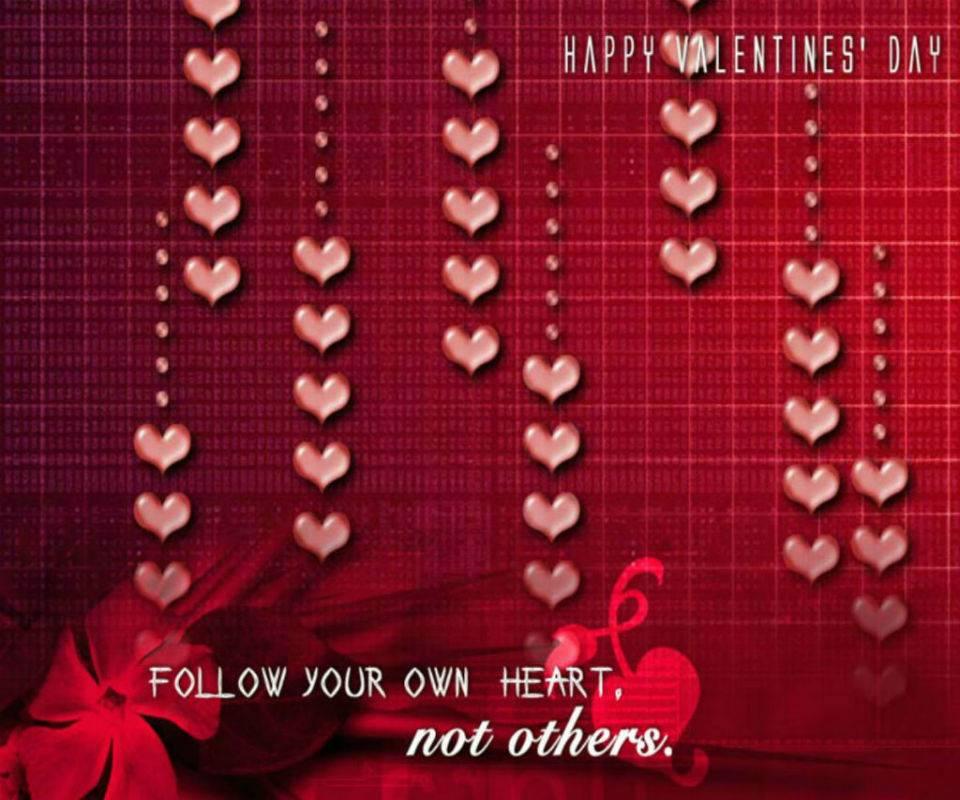 Valentine Day 2014