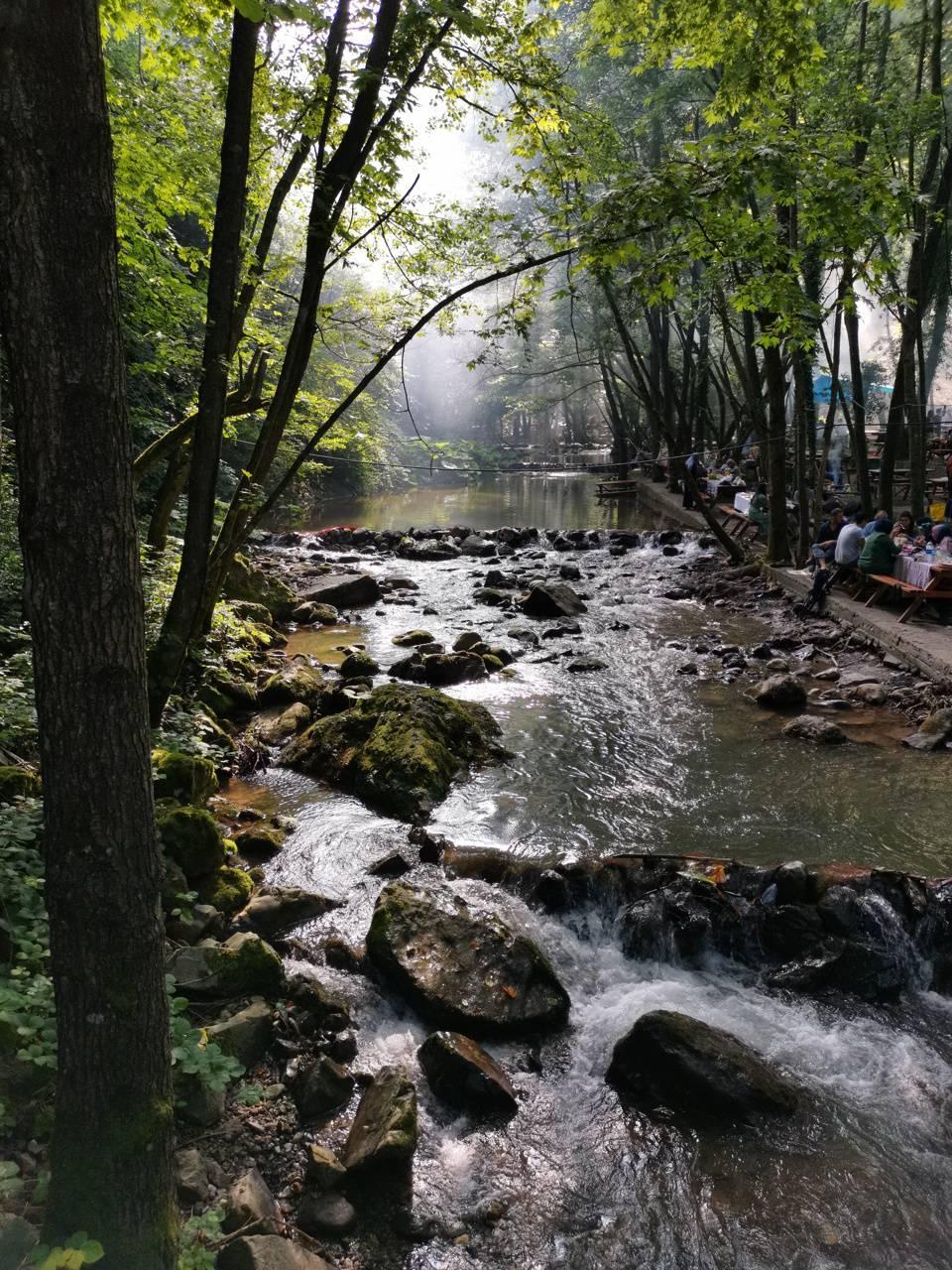 Naturel Turkey