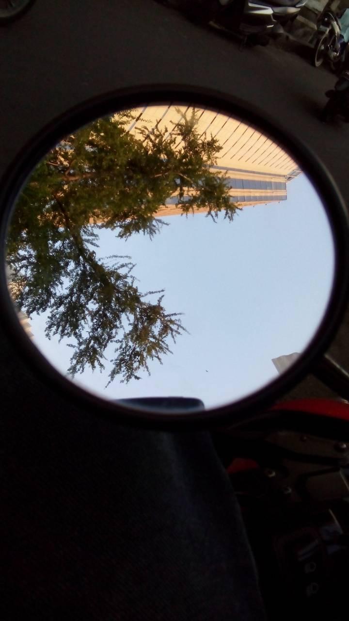 spion bulat