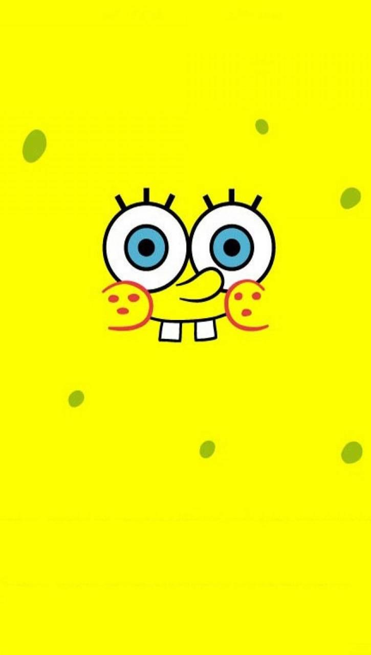 Face Bob