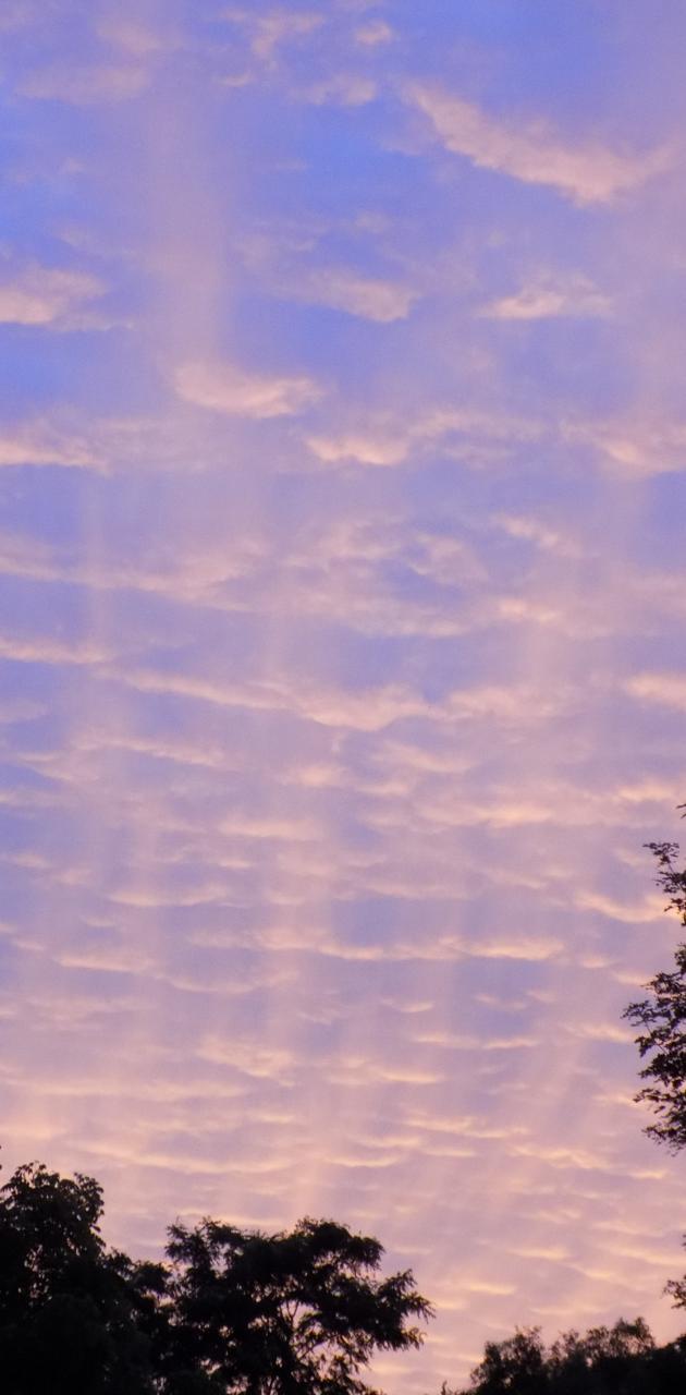 Sunset Sky2
