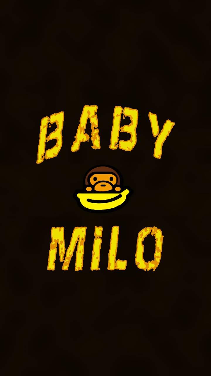 Baby Milo Wallpaper By Studio929