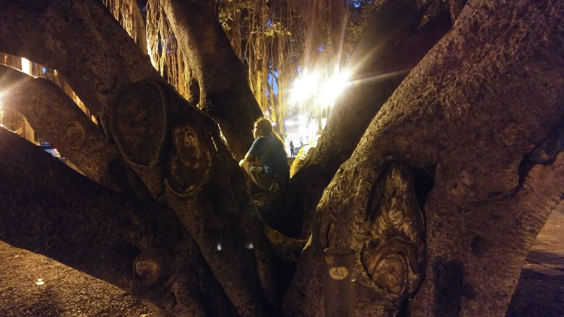 Banyan Tree Child