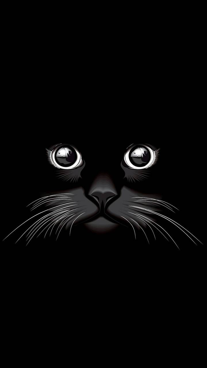 Cat Eyes Wallpaper By Dljunkie E5 Free On Zedge