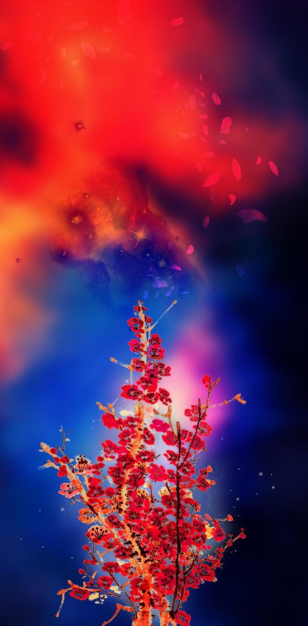 Blossom creating