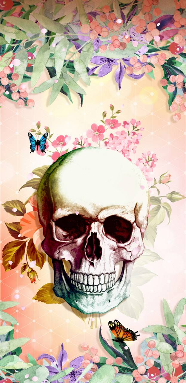 Hidden Skull Wallpaper By Nikkifrohloff 7f Free On Zedge