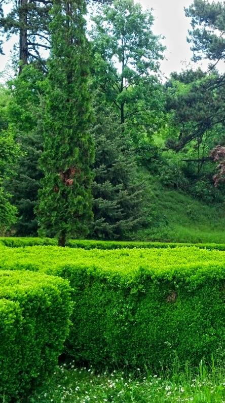 green nature wallpapers free by zedge green nature wallpapers free by zedge