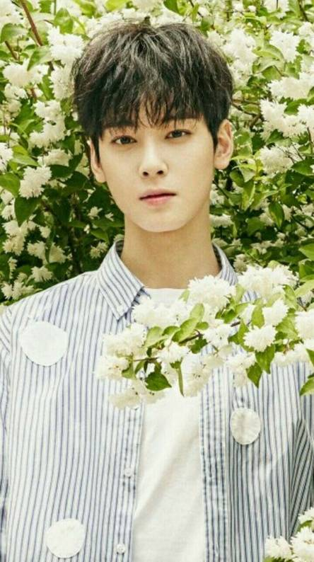 Cha Eunwoo Wallpapers Free By Zedge