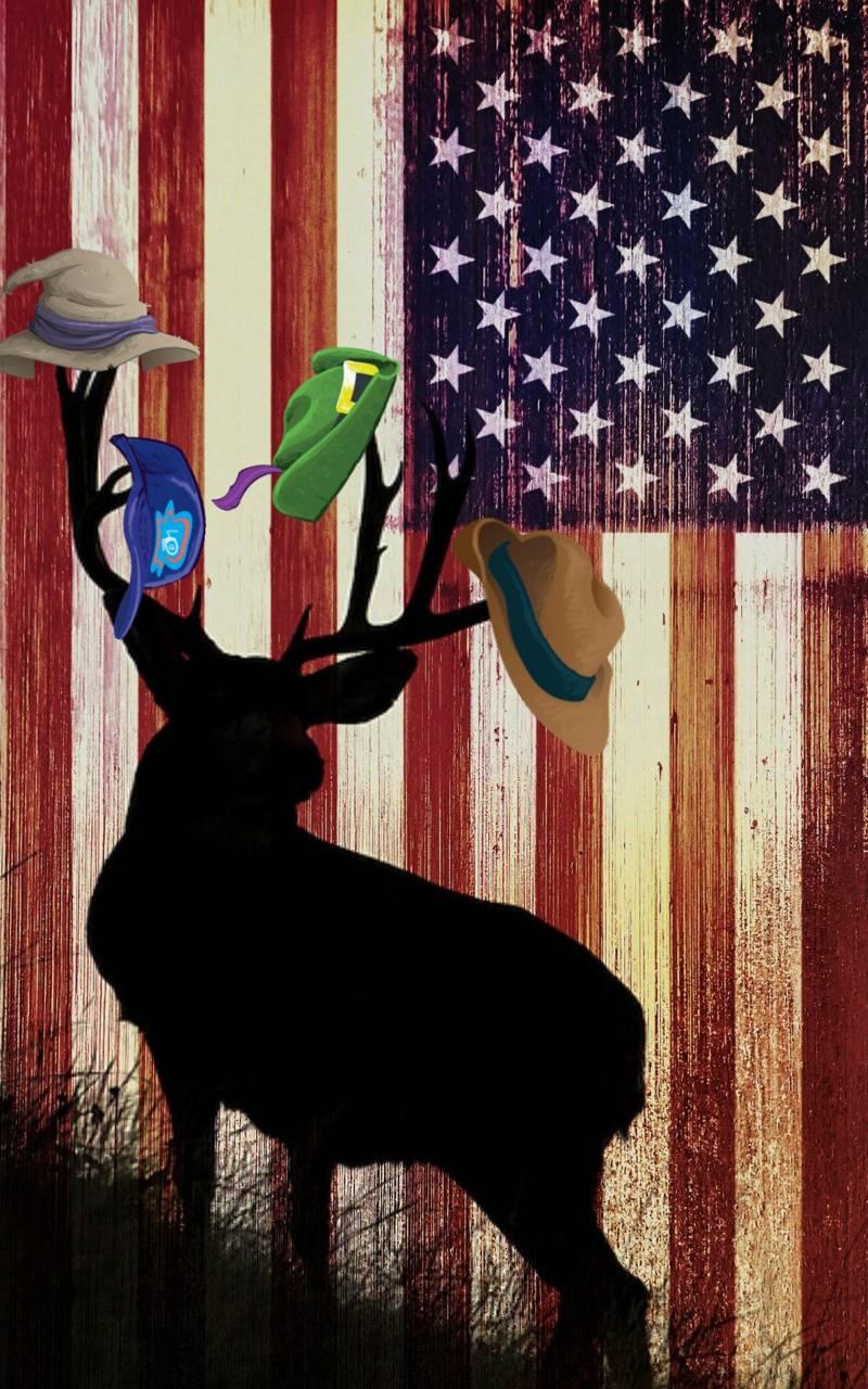 Deer wearing hats