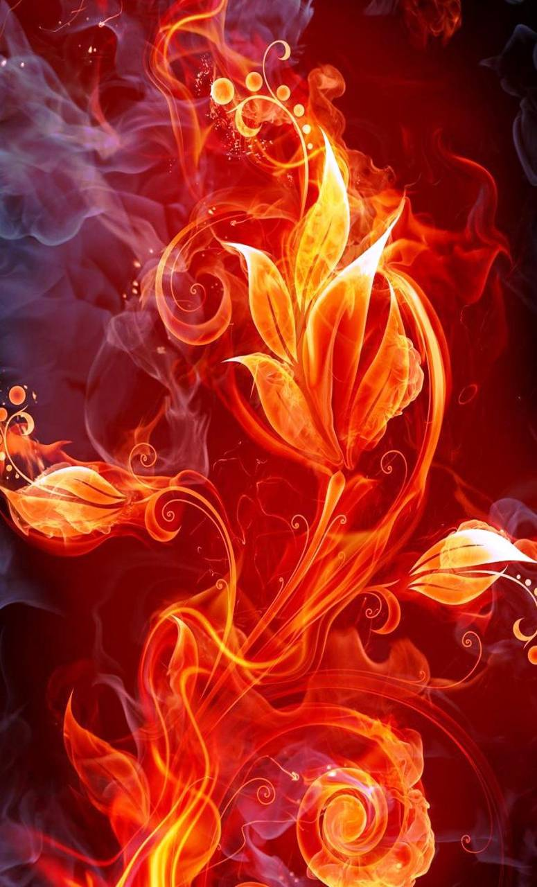 Burning Flowers