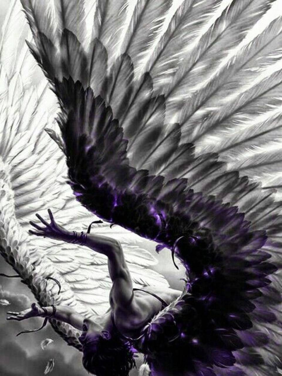 Falling Angel Wallpaper By Fallenlilith 33 Free On Zedge