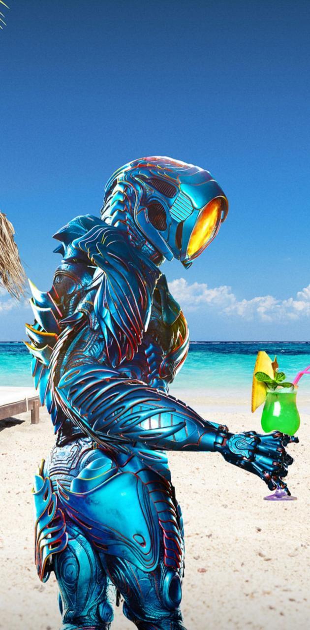 Vacation Robot