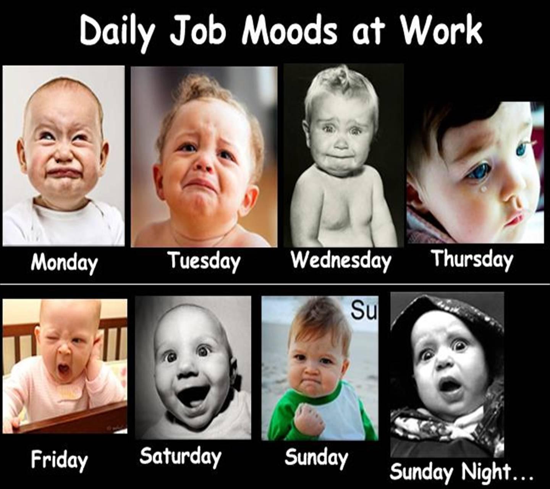 Job Moods