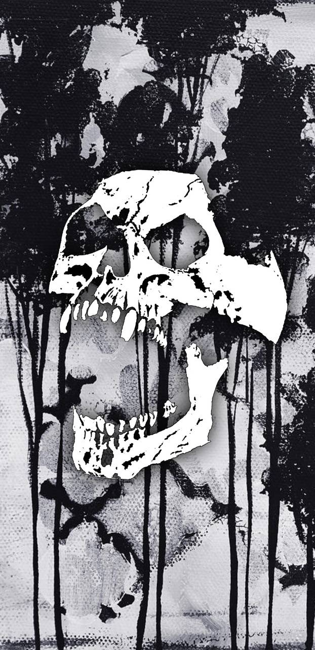 Yelling Skull Wallpaper By Anonwayy A6 Free On Zedge