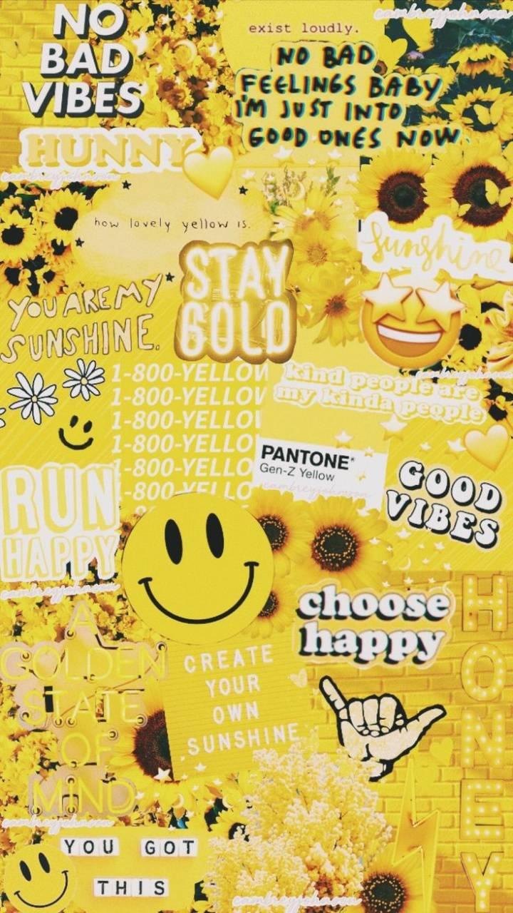 vsco yellow