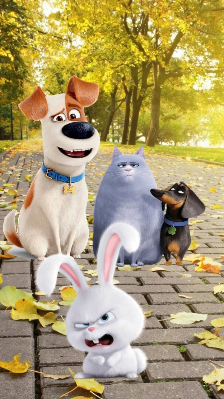 Secret Life Of Pets Wallpaper By Chucho76 41 Free On Zedge