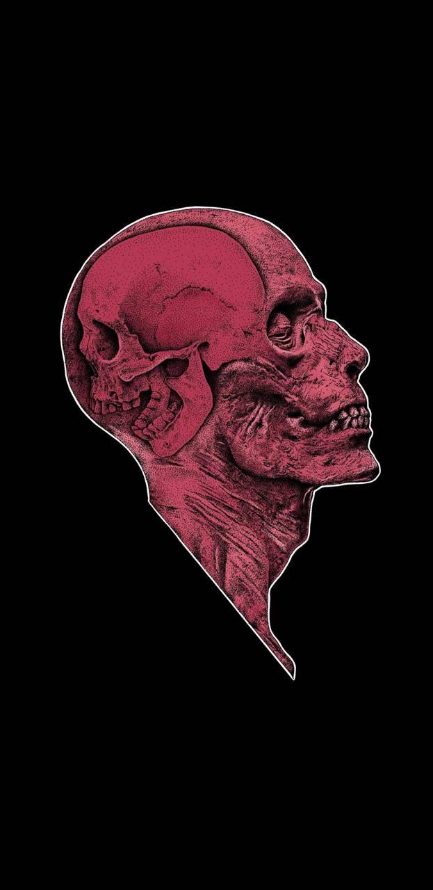 Anatomy psychopath