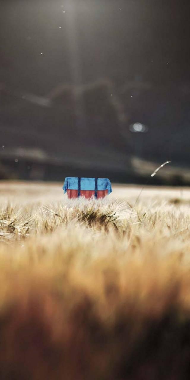 Air Drop Supply PUBG