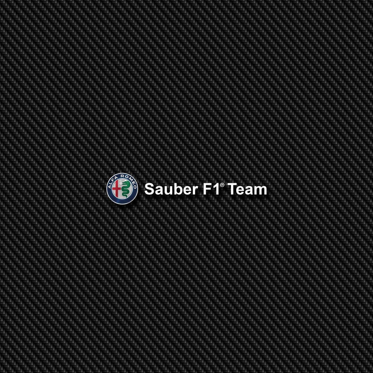 F1 Sauber Carbon