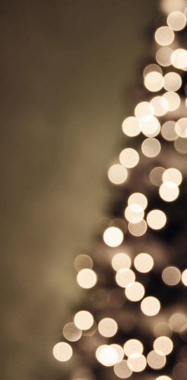 Beauty Lights