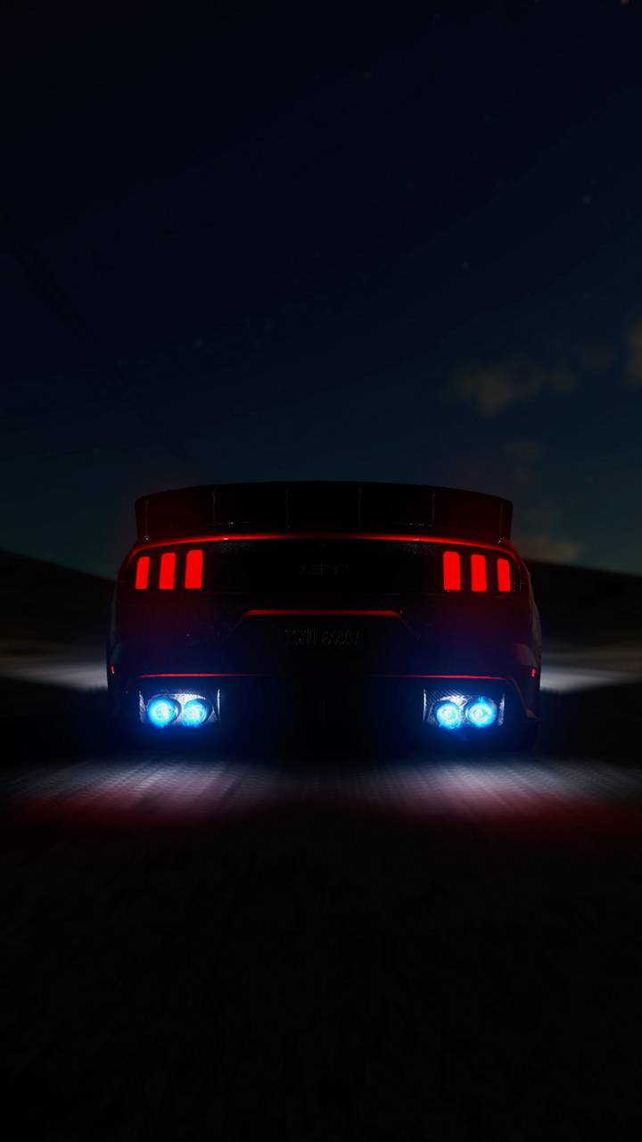 Mustang back view