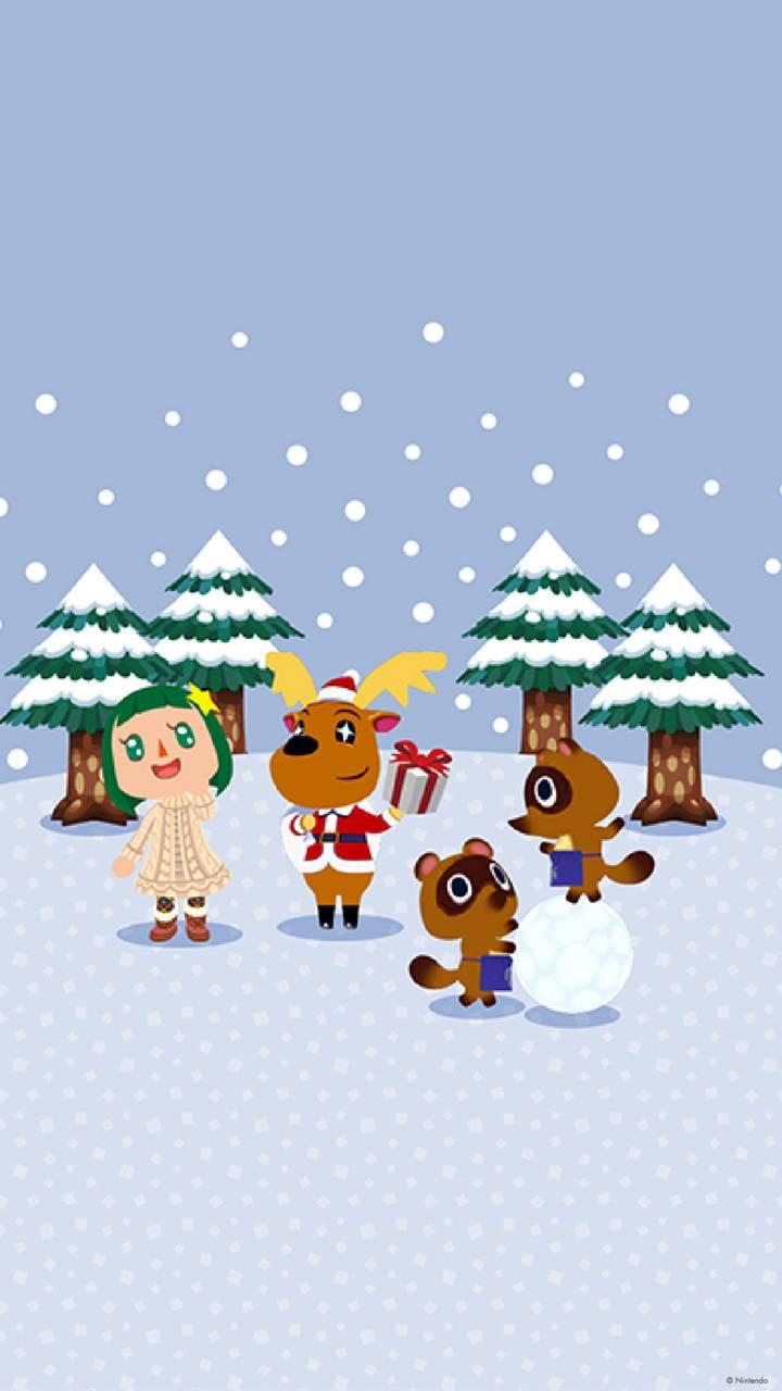 ACPC Winter