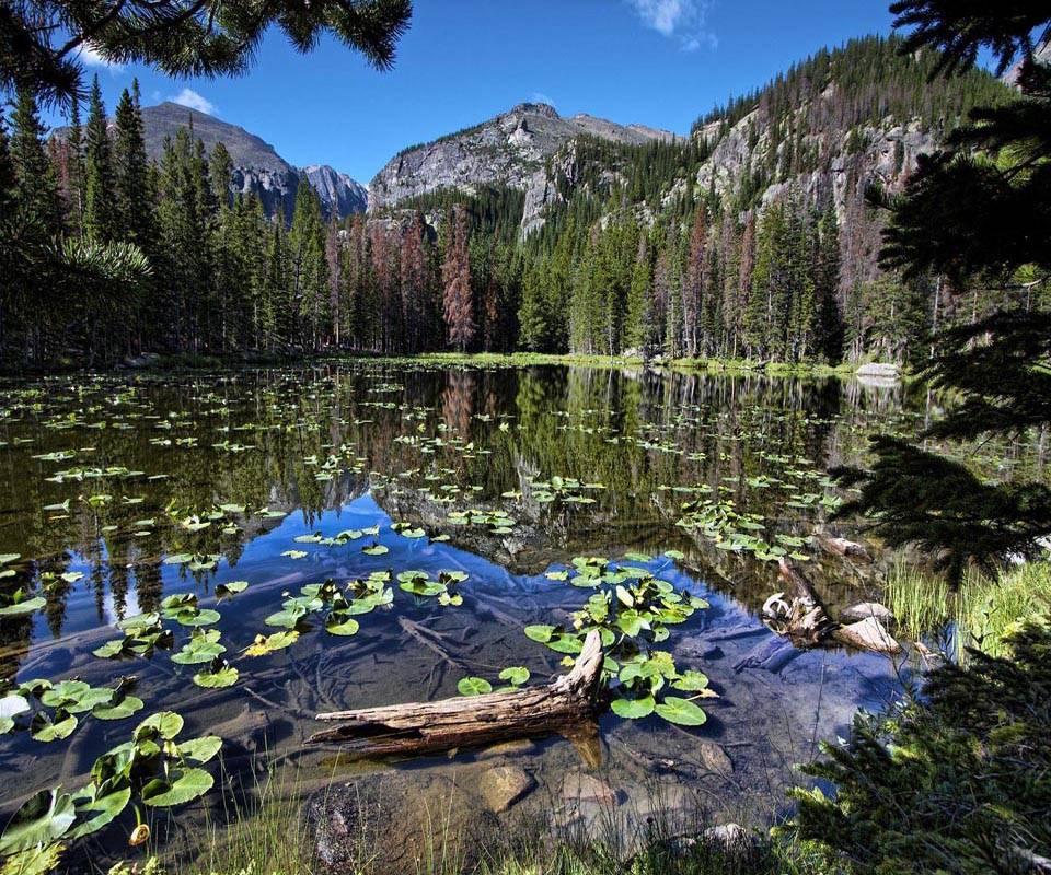 Water Mountain