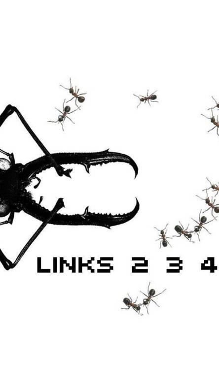 links 234