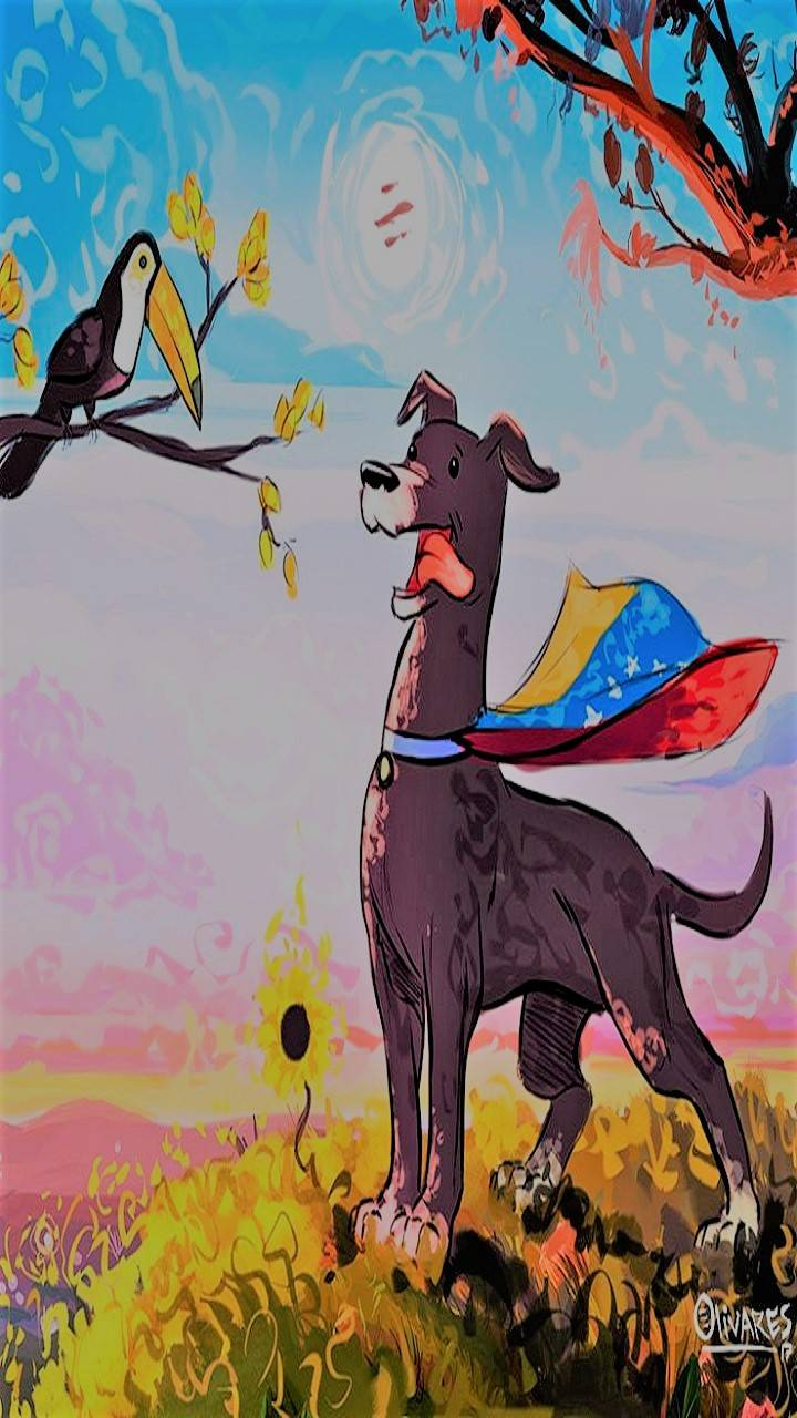 Cross Venezuela