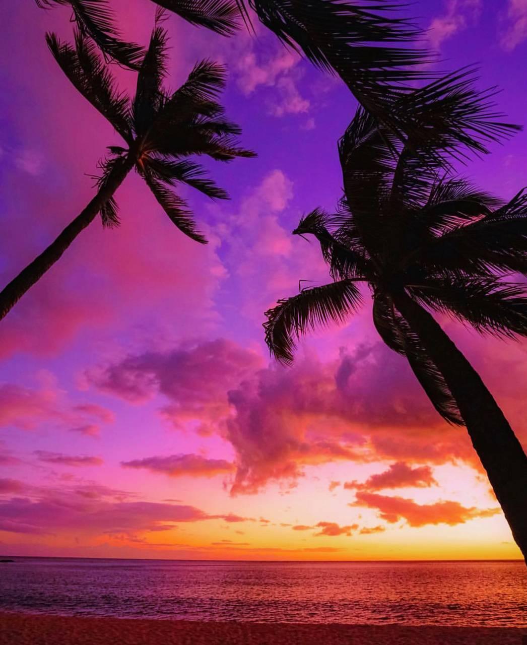 Beautiful Beaches 4