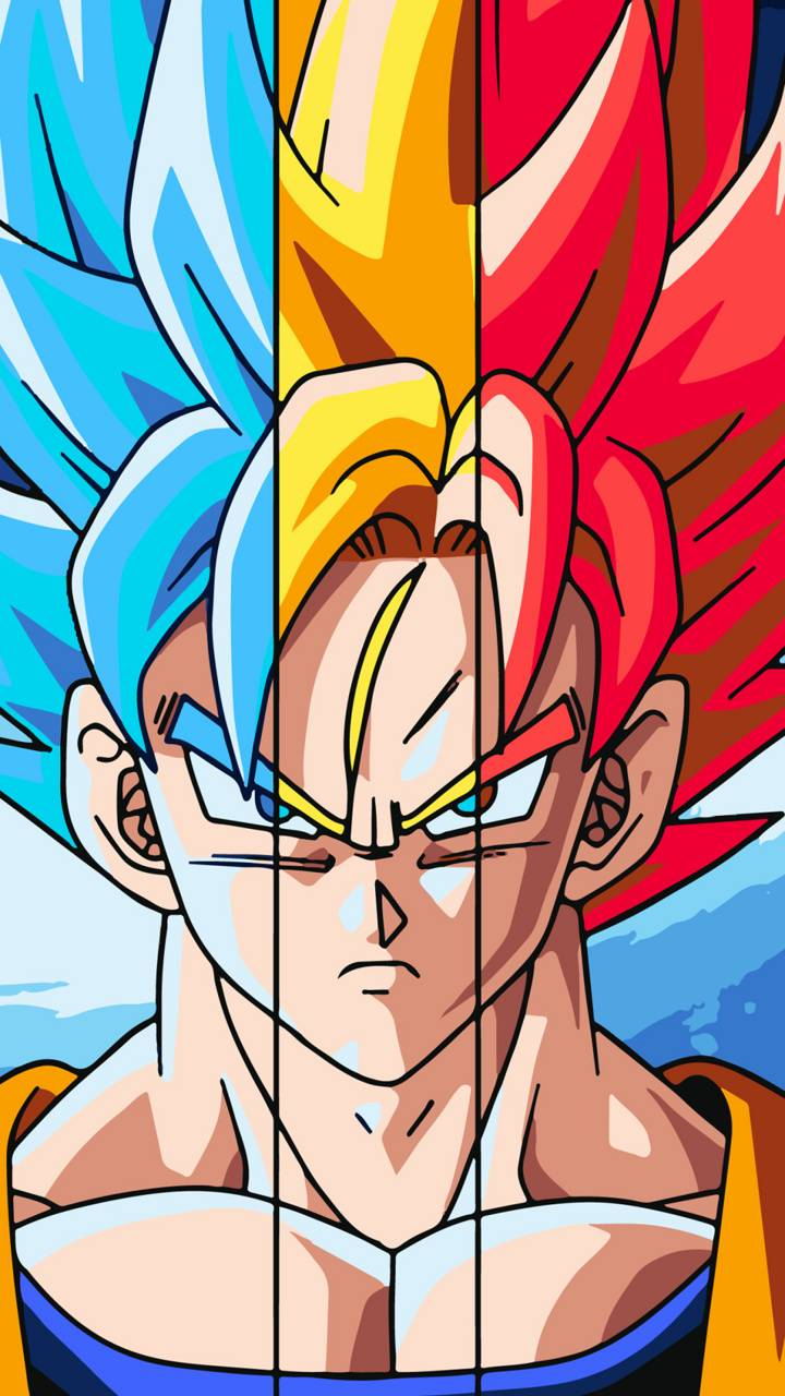 Multi form Goku