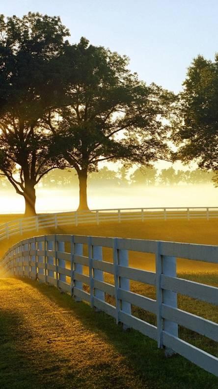 Sunrise-landscape