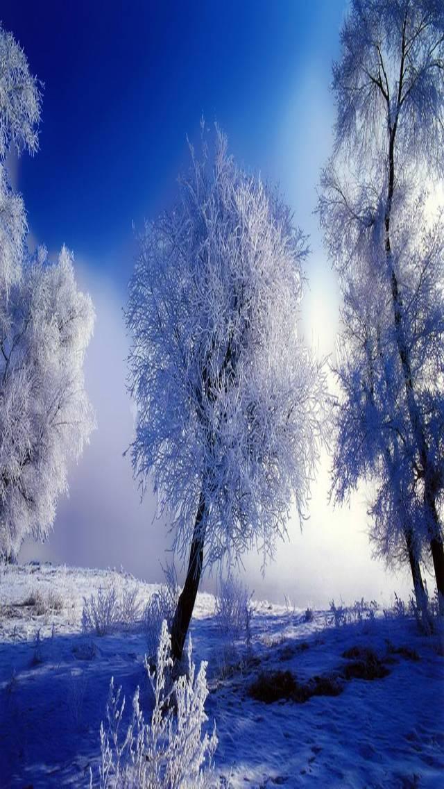 живые картинки зима на телефон снег падает успокоили