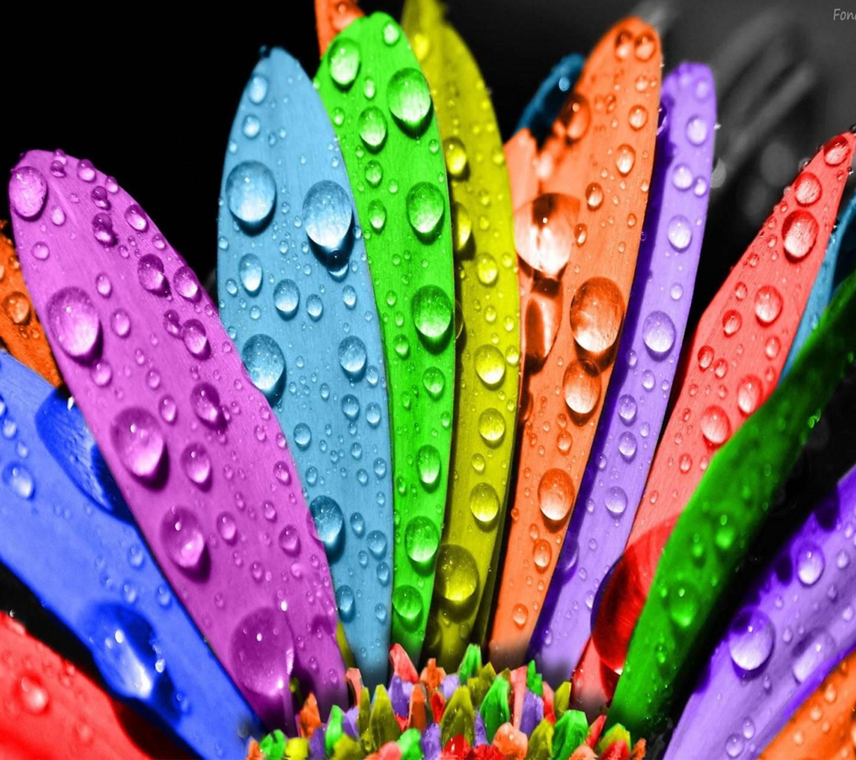 Drops N Colors