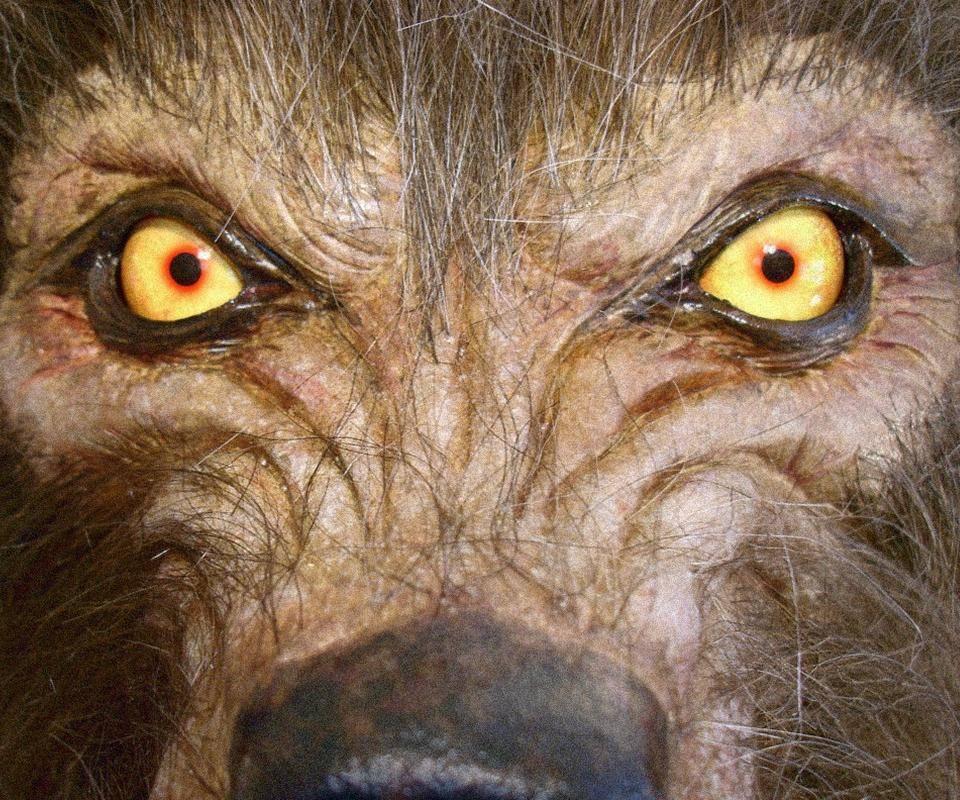 Wolfmaneyes