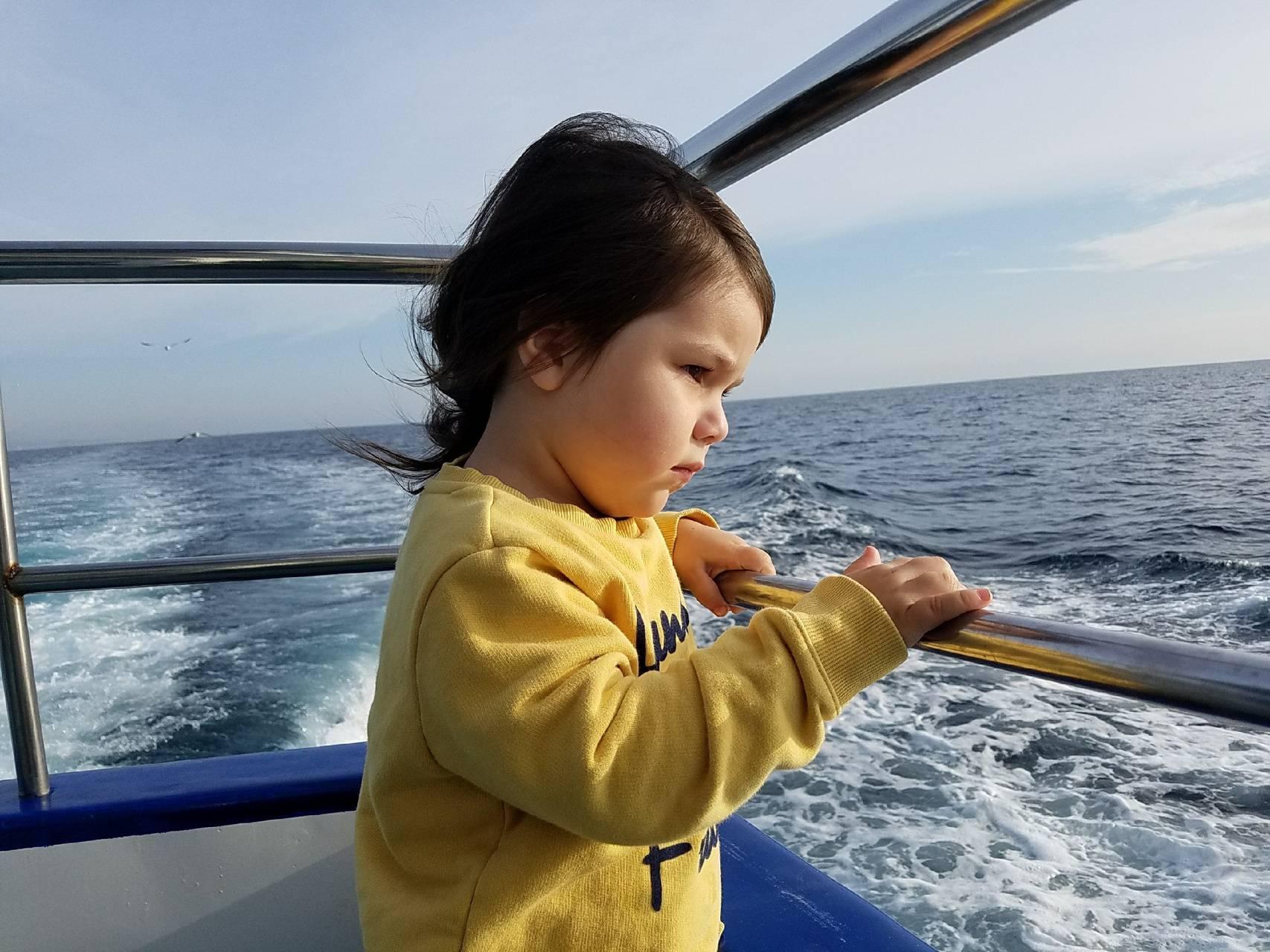 Sage at the sea