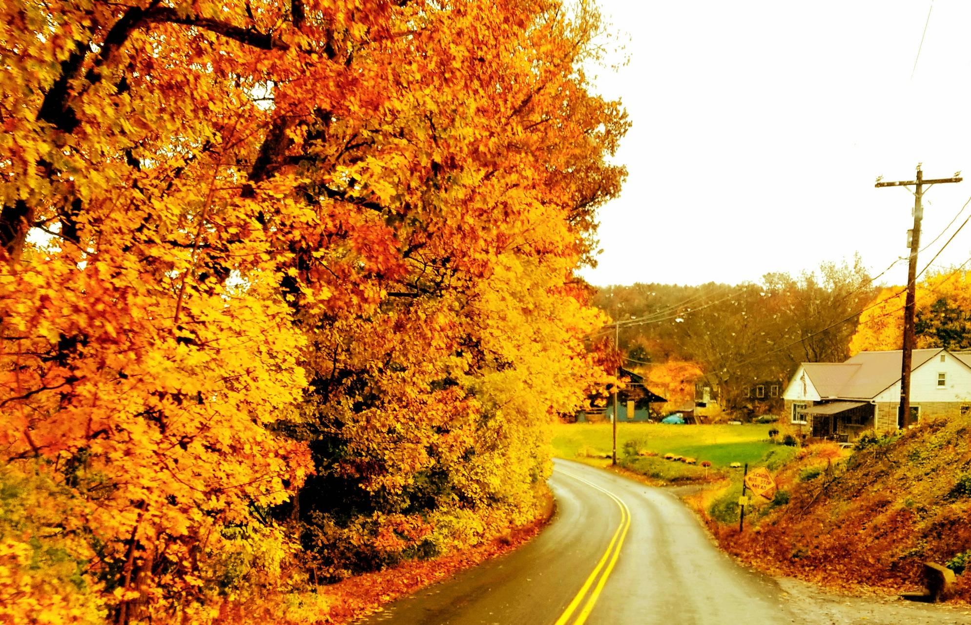 Pennsylvania autumn