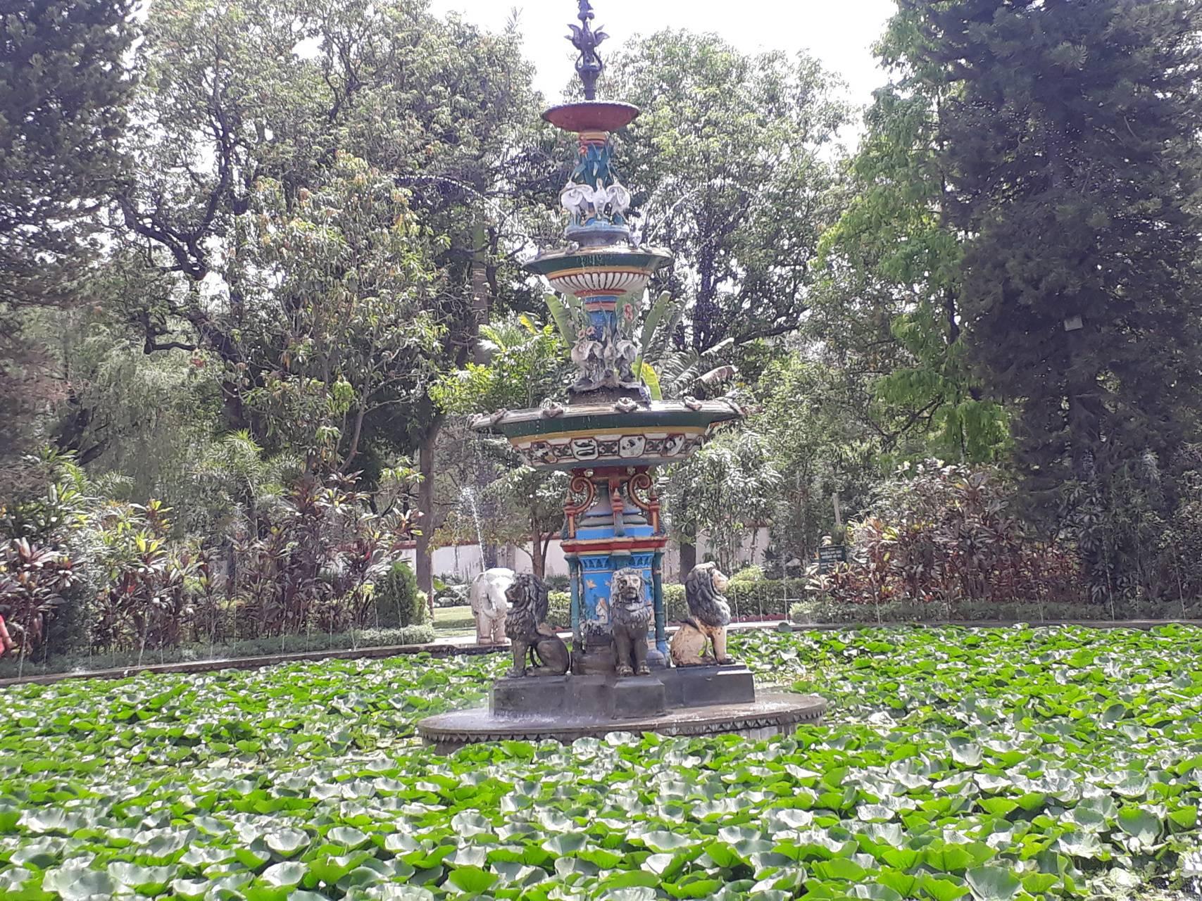 Sukhadia fountain