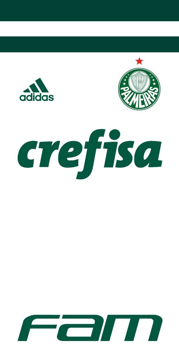 Palmeiras 2018 2
