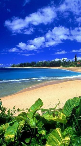Hd Natural Beach