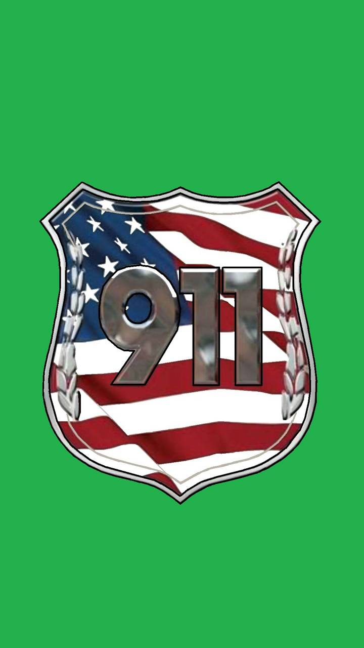 911 USA Green