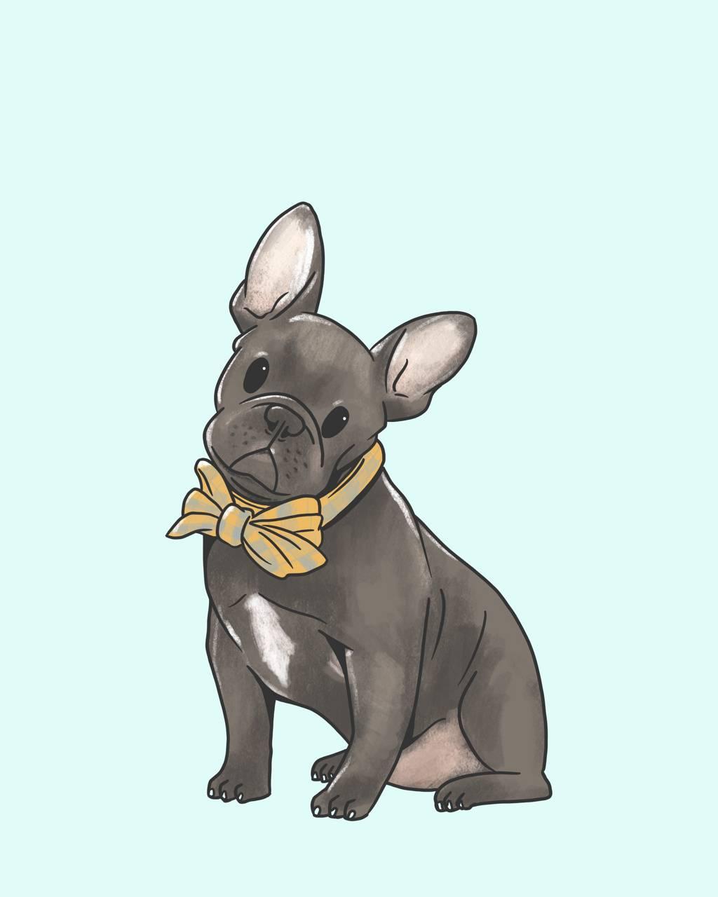 French Bulldog Wallpaper By Scortio Ab Free On Zedge