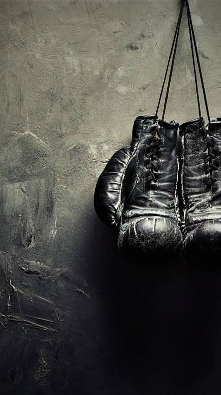 boxing gloves gold. Gloves