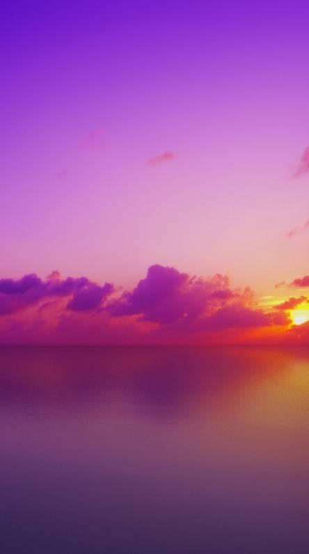 Amazing Sunset Hd