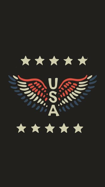 Usa Black Flag