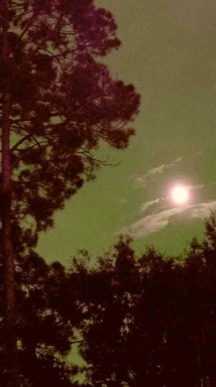 Cloudy Moon 3