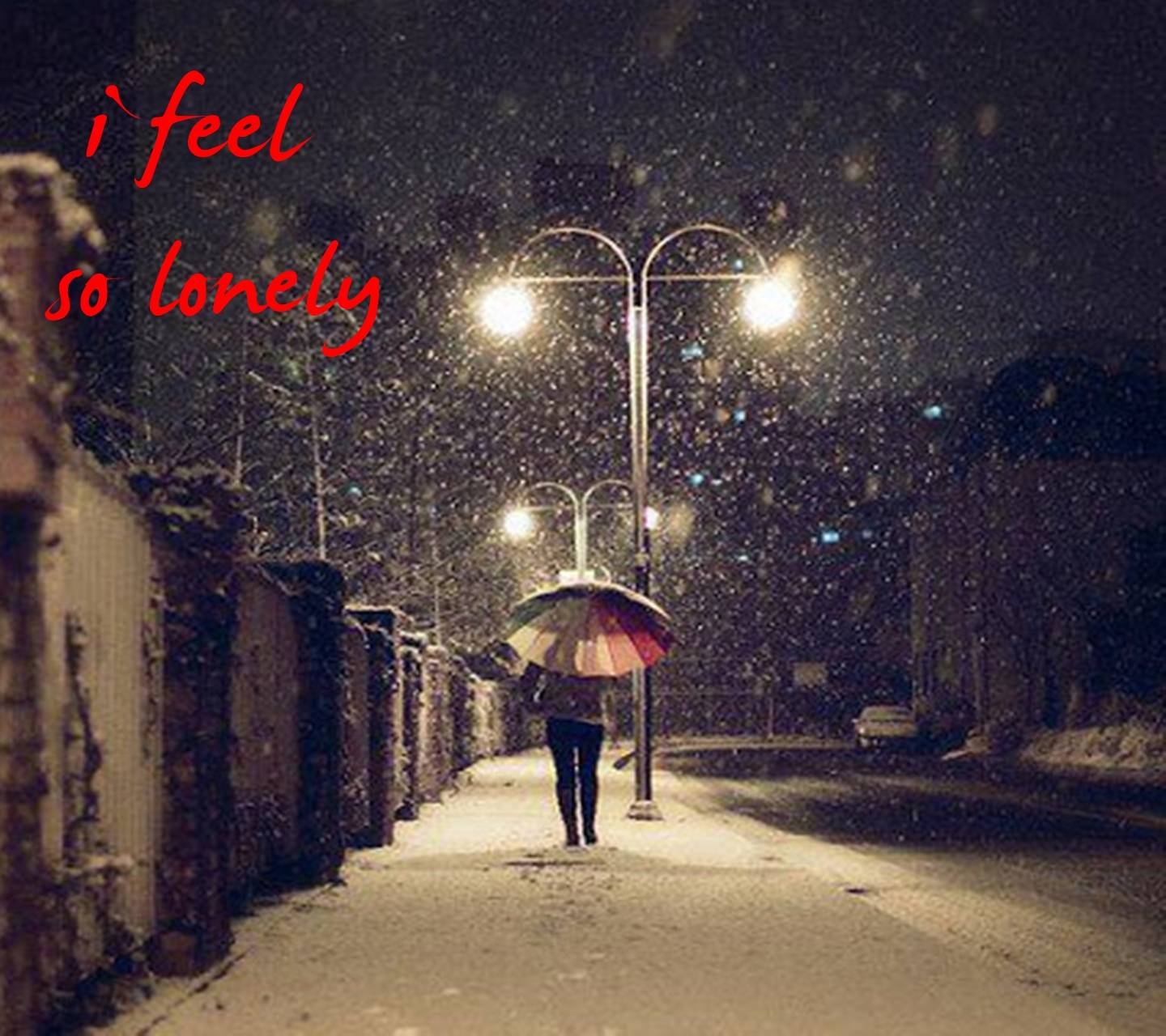 I Feel So Lonely