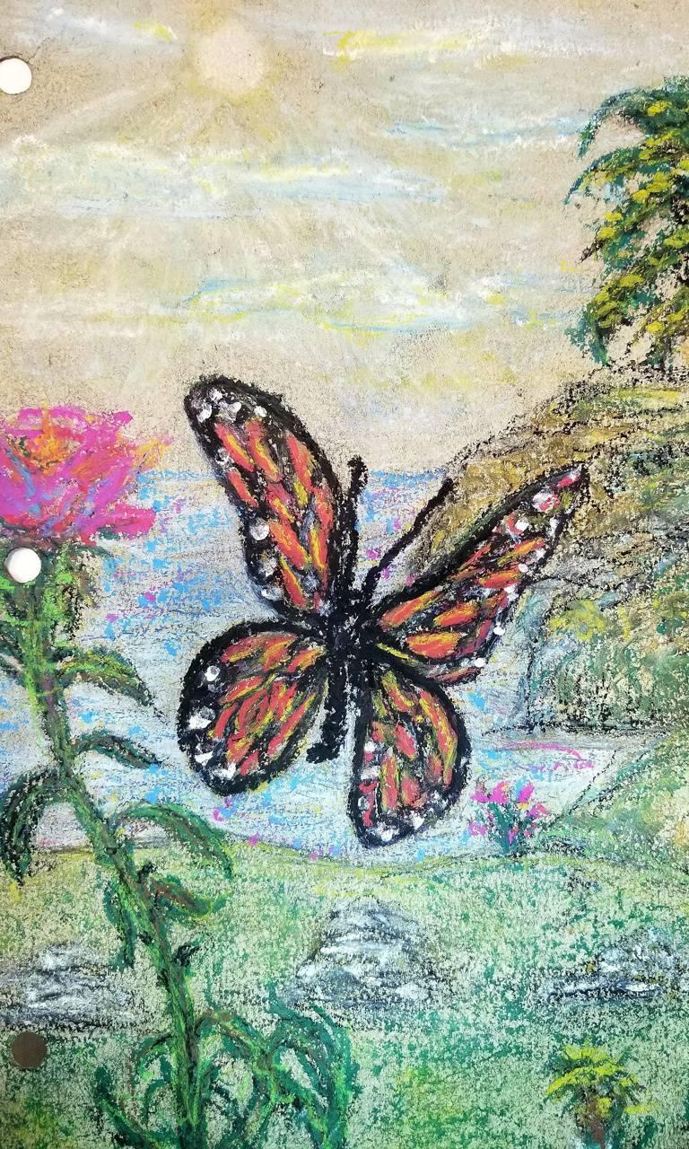 Butterfy island