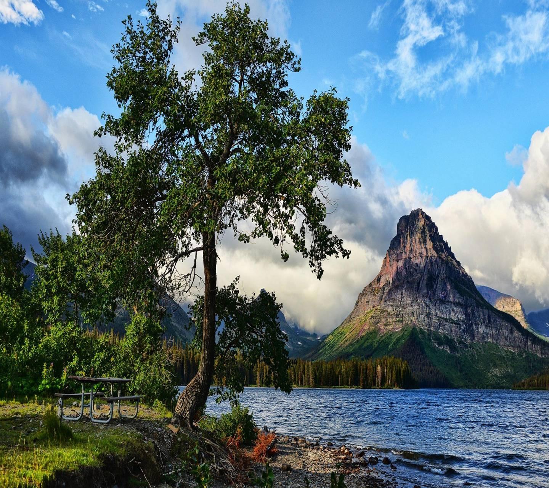 Tree Lake Mountain